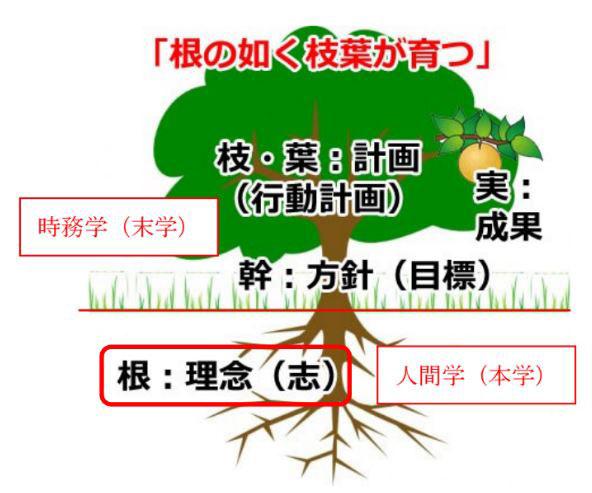 根の如く枝葉が育つ